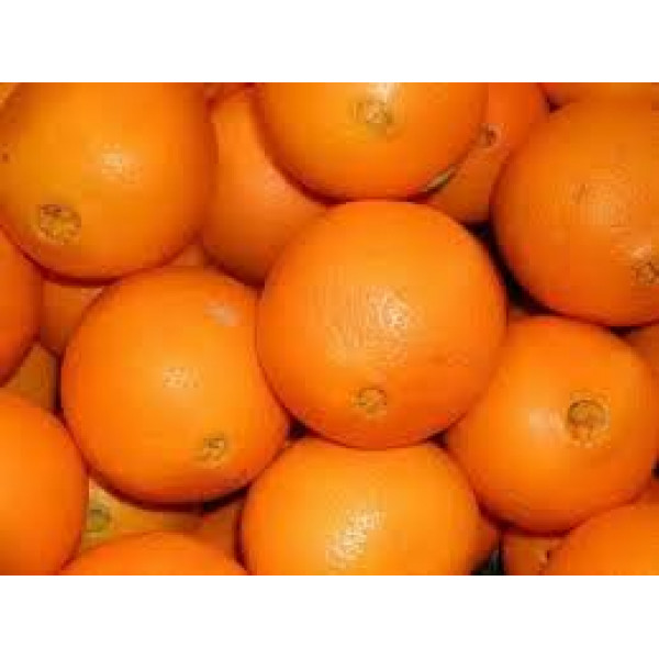 Фрукты Апельсин Томсон 1кг