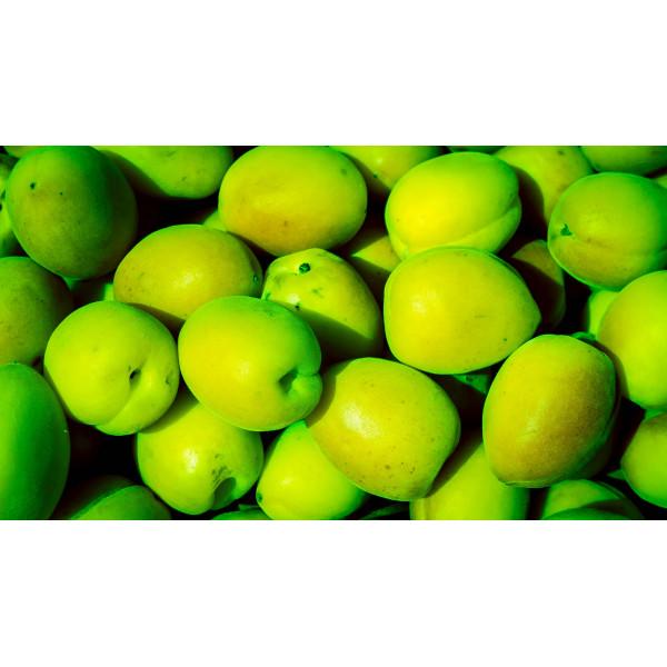 Зелёный урюк