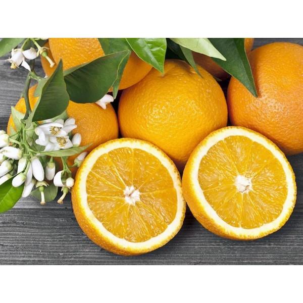 Апельсин (Турция 1кг)