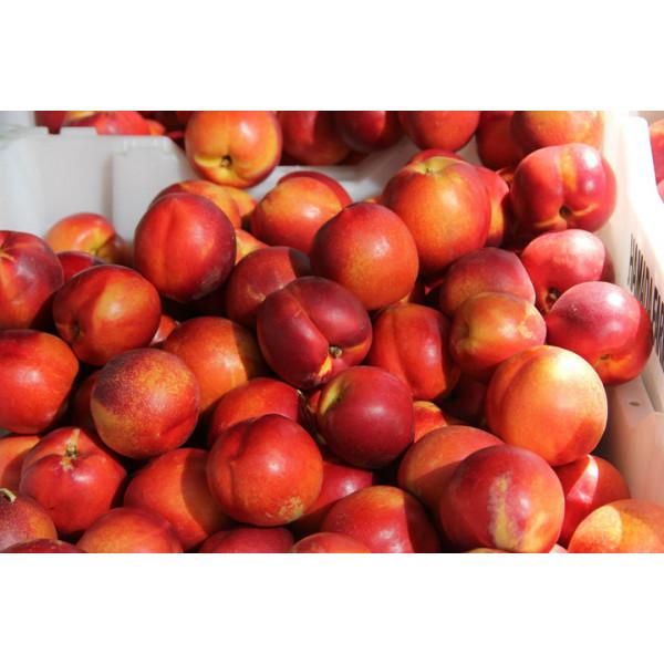 Персик Нектарины 1кг